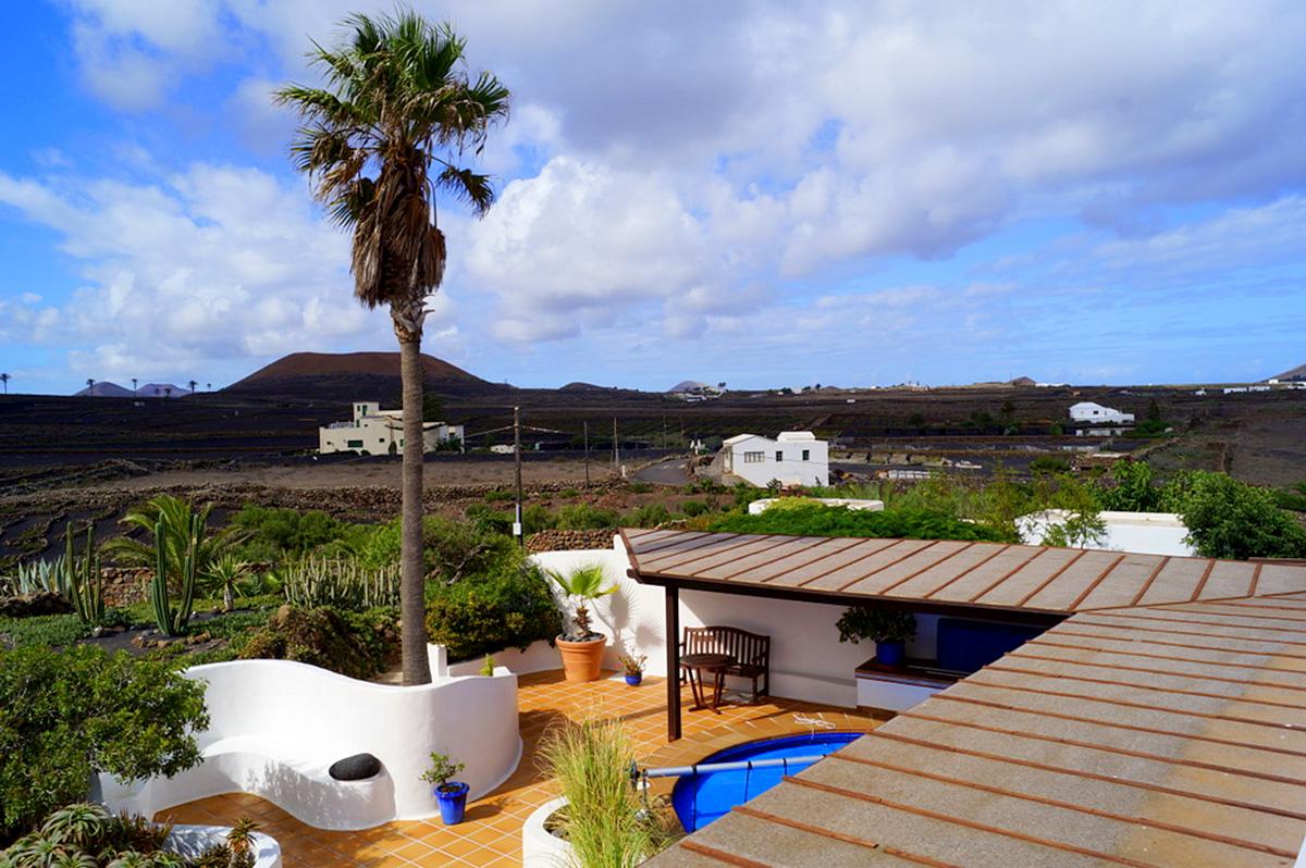 views across vineyards
